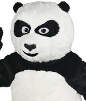 Bear Mascot Costume Rentals