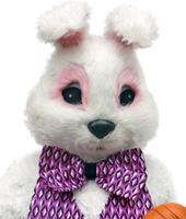 Bunny Rabbit Mascot Costume Rentals