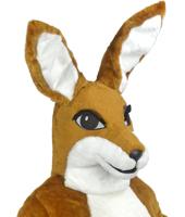 Mascot Costume Rentals
