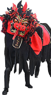 Red and Black Chinese Dragon Costume