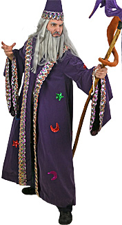 Wizard Rental Costume