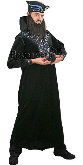 Wizard Rental Costume