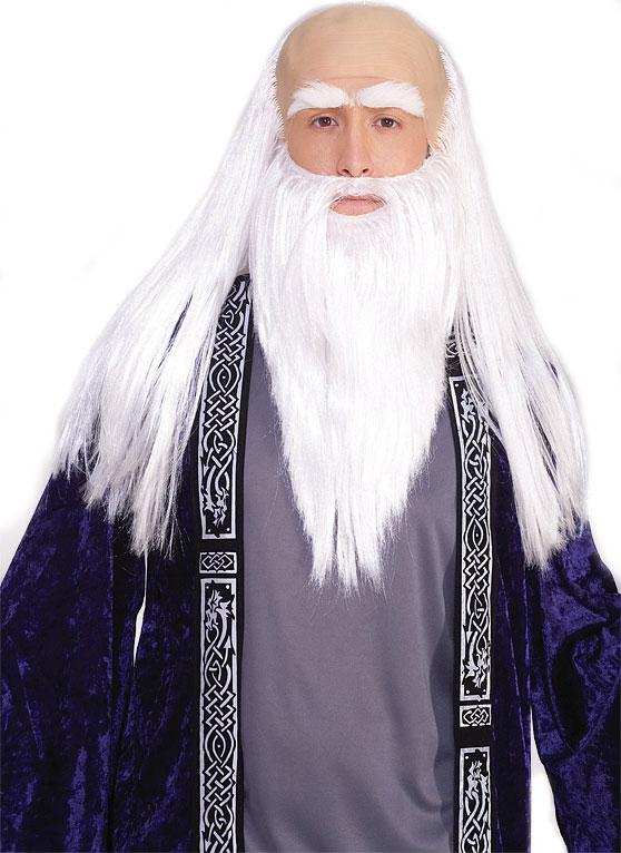 Wizard Kit  sc 1 st  Boston Costume & Wizard Wig u0026 Beard Set in White at Boston Costume