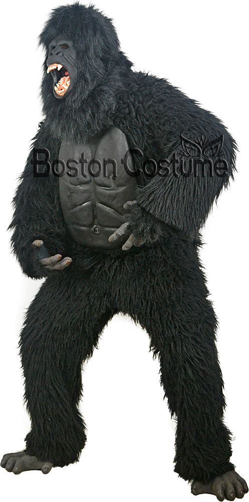 Halloween Costume Rental
