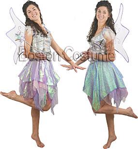 Fairy Rental Costume