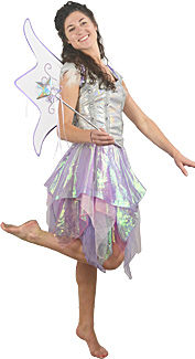 Fairy Rental Costume