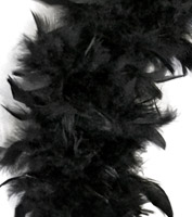 Long Black Feather Boa