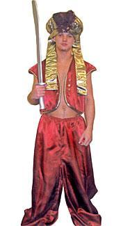 Harem Guard #1 Costume