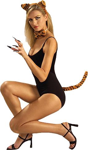 Tiger Kit