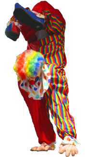 Upside-Down Clown Costume