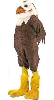 Hawk Costume