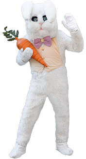 White Bunny Rabbit Costume