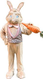 Tan Bunny Rabbit Costume