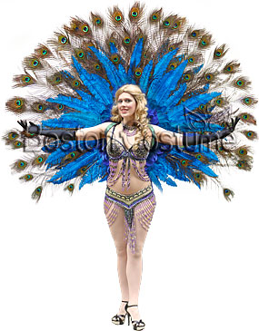 Peacock Showgirl Costume