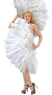 Burlesque Feather Fans